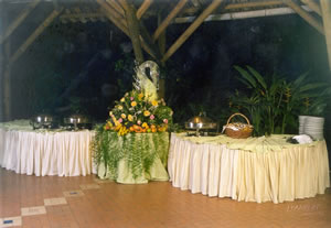 latin wedding services